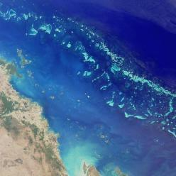 BARRIER REEF