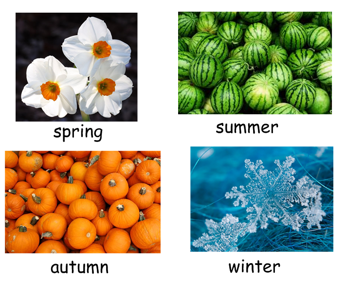 seasons patterns